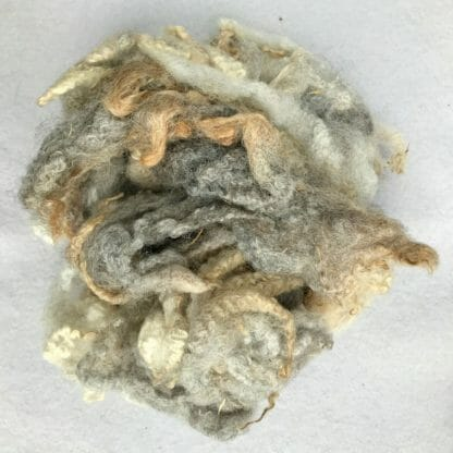 Image of Fibres